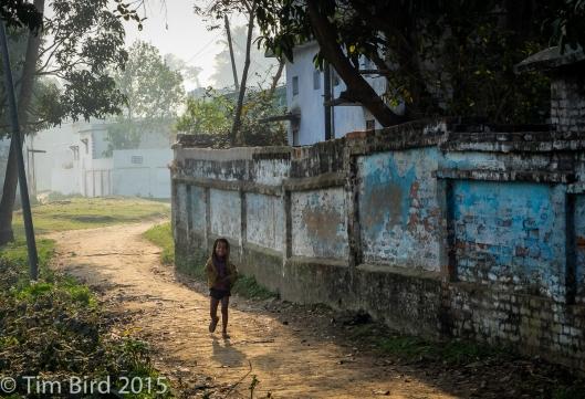 indi-3656